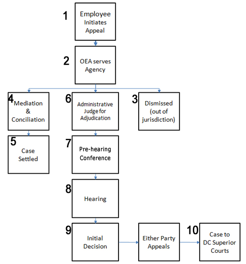 flow diagram of the appeals process